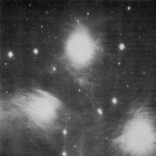 grouper-alien-observer